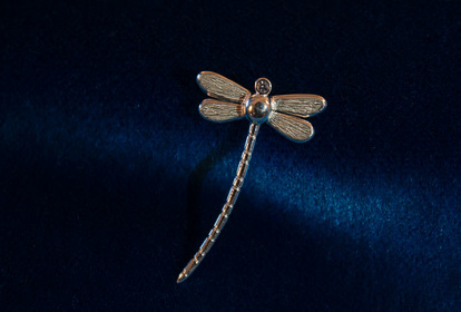 Dragonfly pendant in silver from SilverWijk