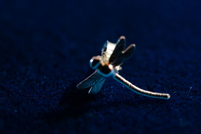 Dragonfly silver earrings from SilverWijk